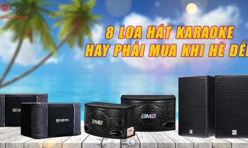 8 loa hát karaoke hay, Hè đến phải mua ngay