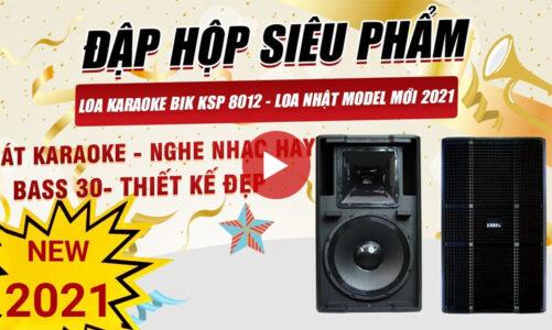 Loa BIK Nhật 8012 full bass 30, Model mới 2021, hát karaoke, nghe nhạc hay